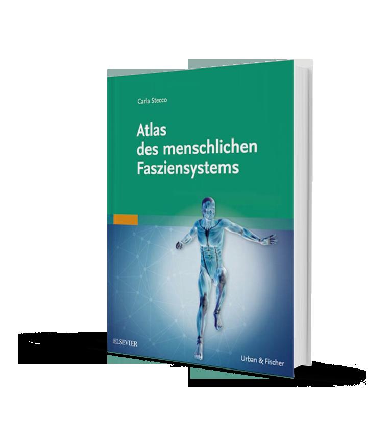 Fascial Manipulation » Atlas des menschlichen Fasziensystems – Carla ...